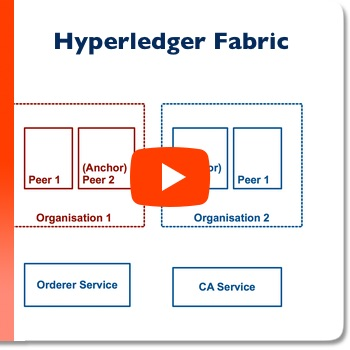 Hyperledger - Build Your First Network - A walkthrough (video)